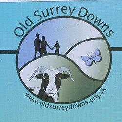 old surrey downs logo